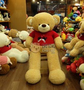 Gấu Teddy Kissing Couple - Màu Vàng