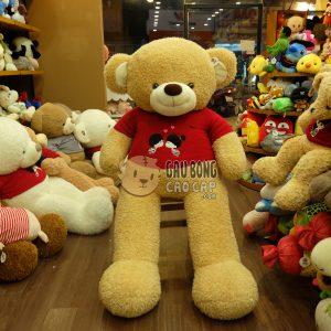 Gấu Teddy Kissing Couple – Màu Vàng