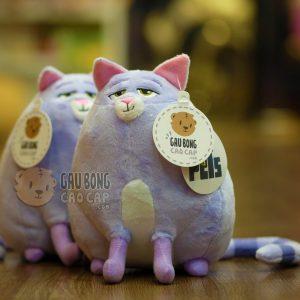 Mèo Chloe - Đẳng Cấp Thú Cưng