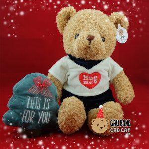 Gấu Teddy mặc áo thun Hug Me