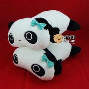 Panda nằm