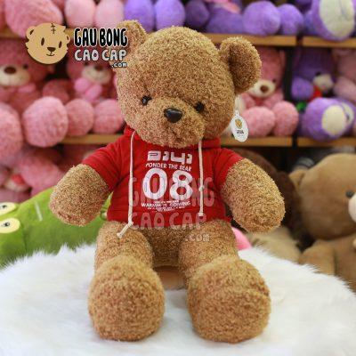 Gấu Teddy mặc áo Hoodie