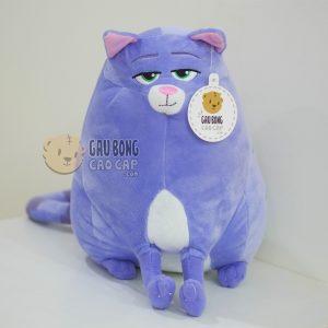 Mèo Chloe – Đẳng Cấp Thú Cưng