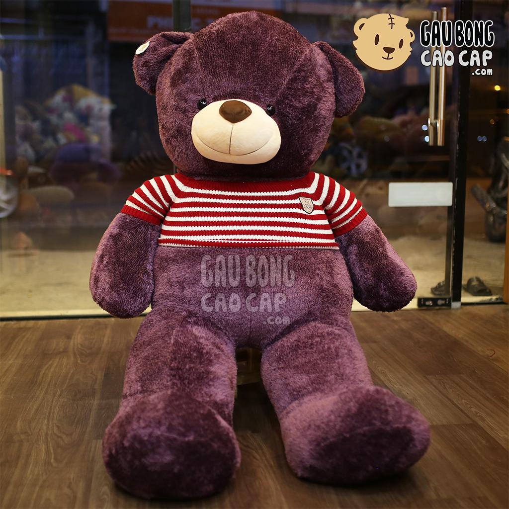 Teddy tím lông sợi áo len sọc