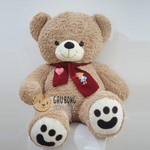 Gấu Teddy lông Layer choàng khăn