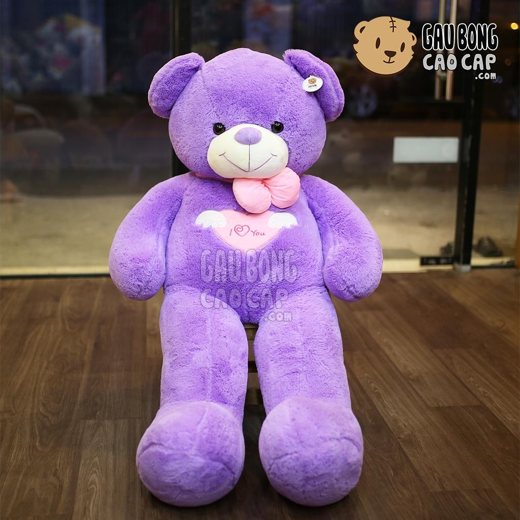 Gấu Teddy Angel tím