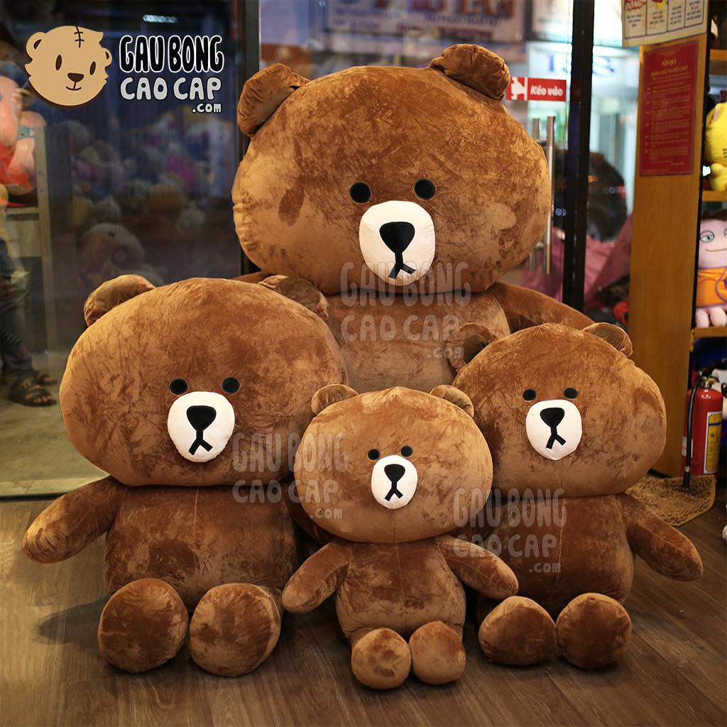 Gấu Brown - Gấu Bông Brown