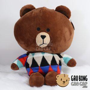 Brown mặc áo len – Có mền bên trong