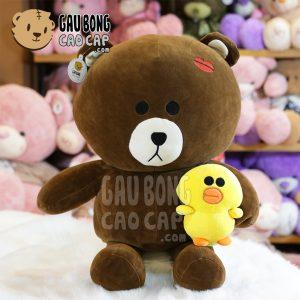 Gấu Brown Kiss ôm vịt vàng