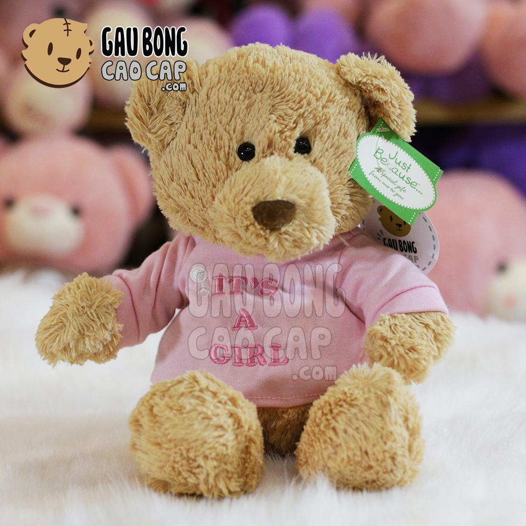 Gấu Teddy Little Bear mặc áo thun màu