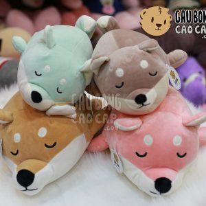 Chó bông Akita Colorful