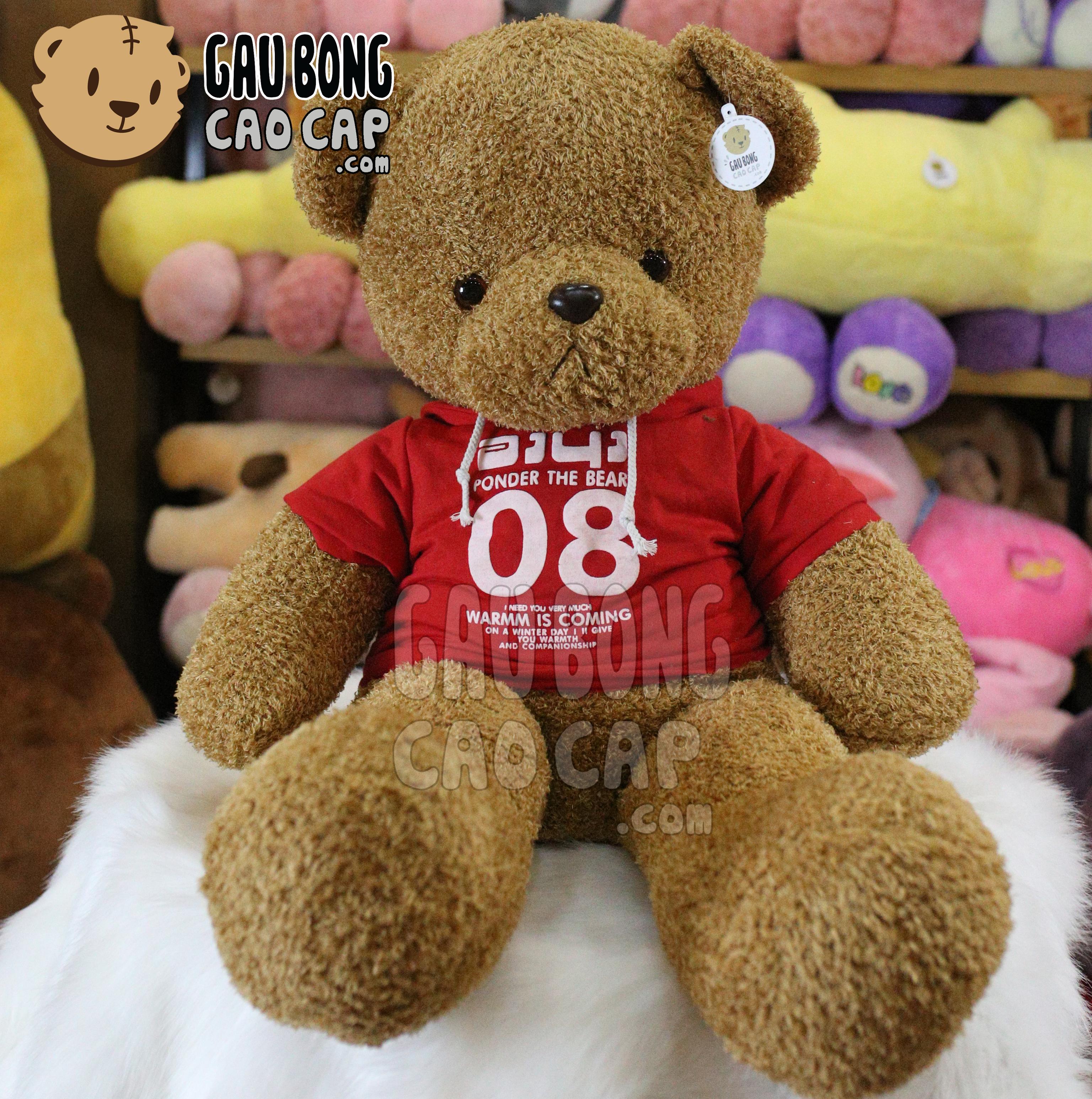 Gấu Teddy lông xù mặc áo Hoodie 08