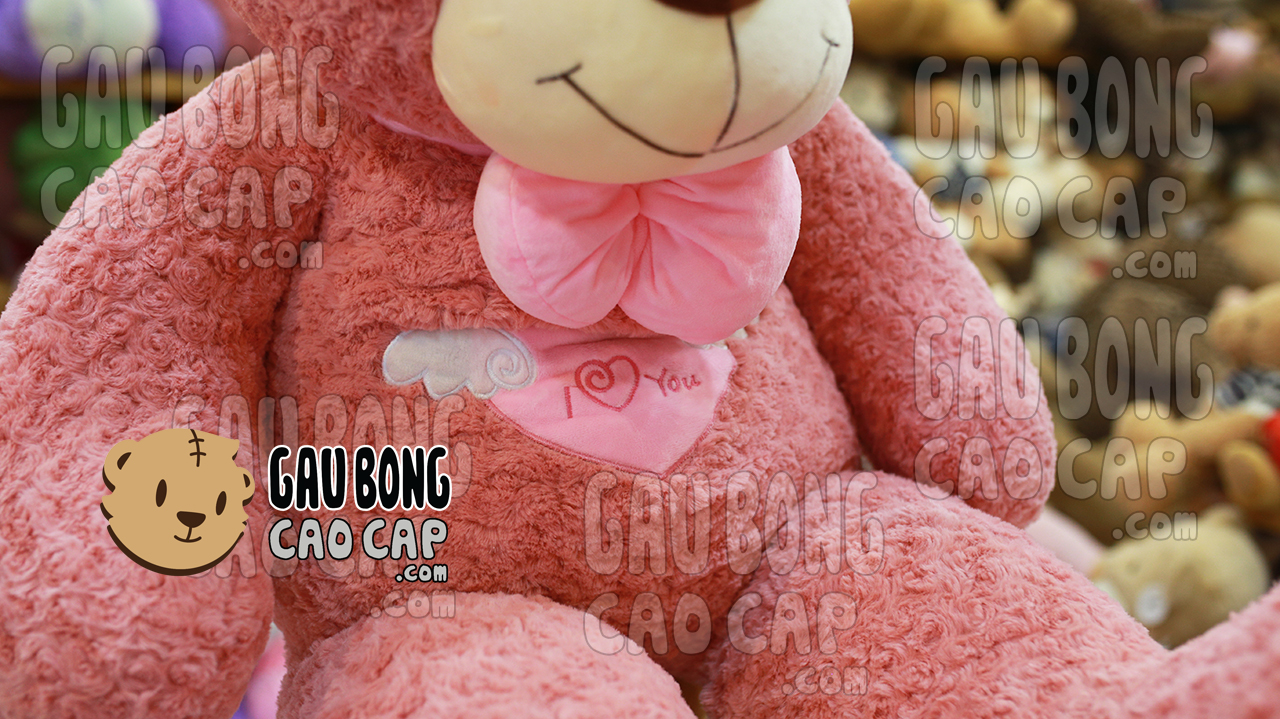 Gấu Teddy Angel - Màu Hồng