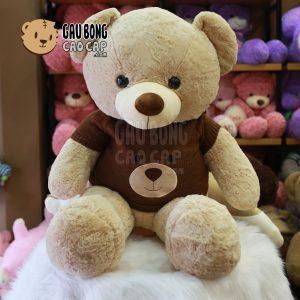 Gấu Teddy Smooth áo len mặt Gấu