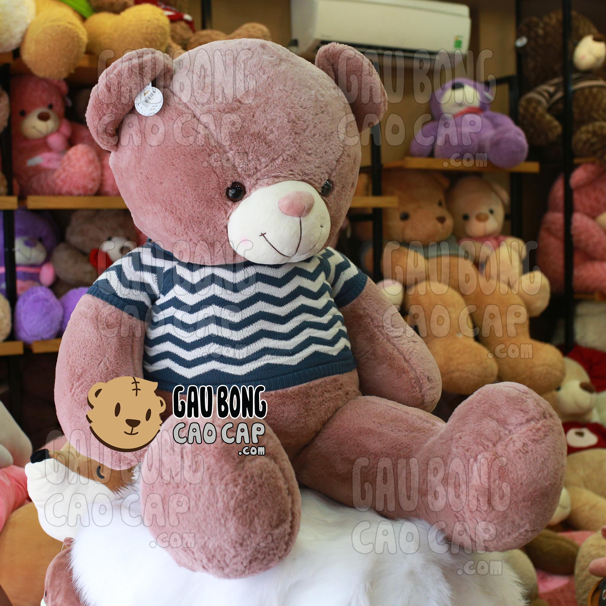 Gấu Teddy mặc áo len ZicZac