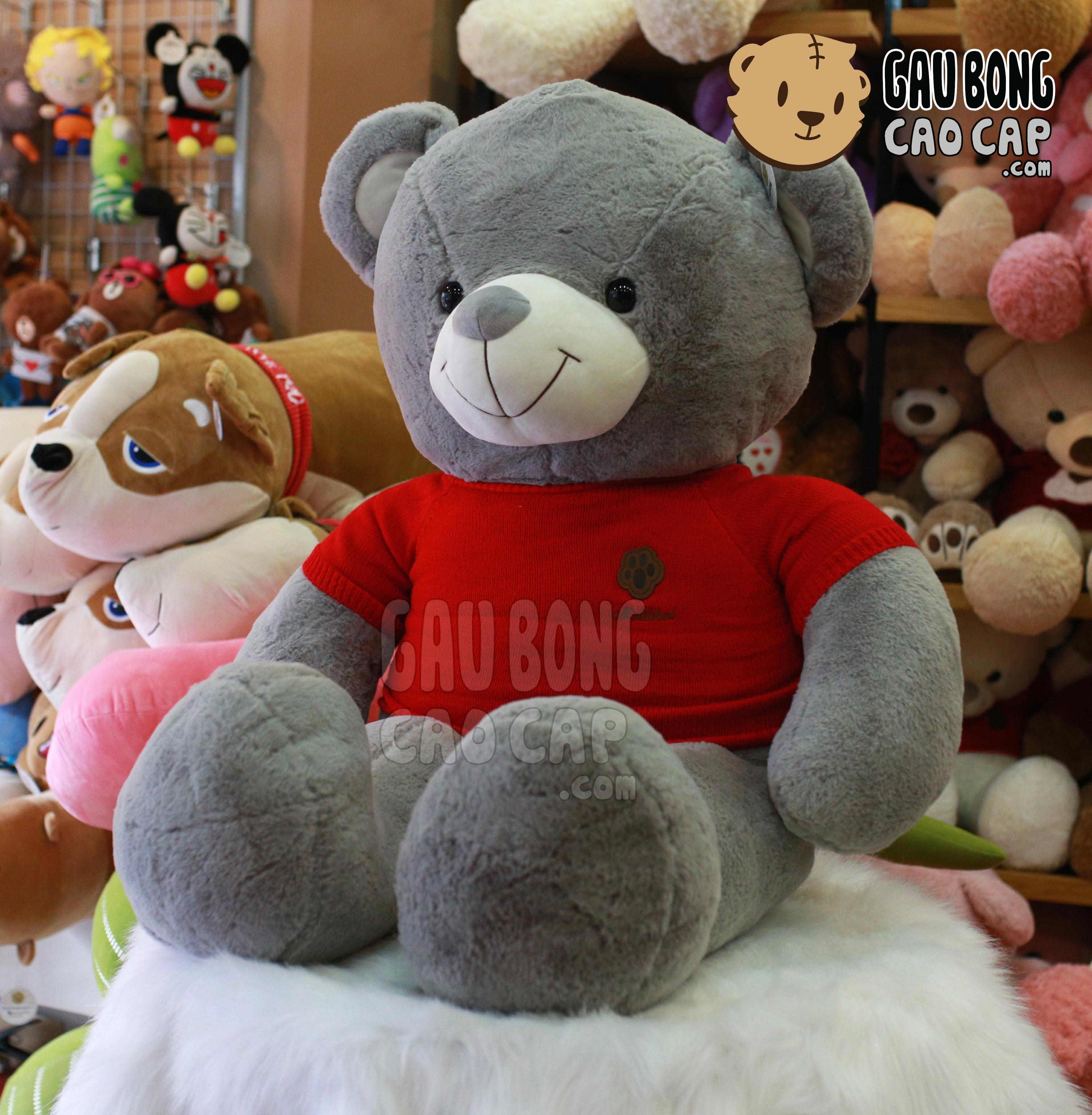 Gấu Teddy áo len chân Gấu