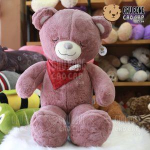 Gấu Teddy sleep choàng khăn đỏ