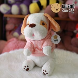 Chó Bông tai dài ngồi mặc áo Hoodie