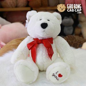 Gấu trắng Bắc Cực đeo nơ đỏ