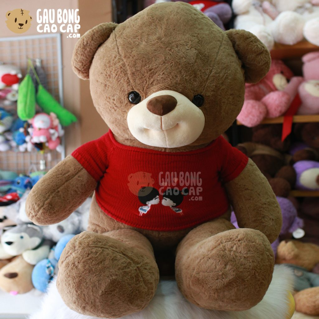 Gấu Teddy Smiley lông smooth mặc áo len