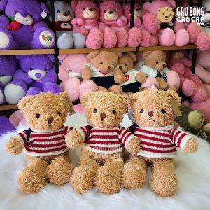 Gấu Teddy lông xù áo len cờ Mỹ