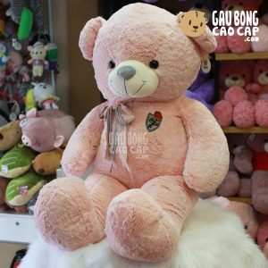 Gấu Teddy ngực Nơ Thêu Hoa Hồng