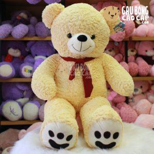 Gấu Teddy lông layer choàng khăn đỏ