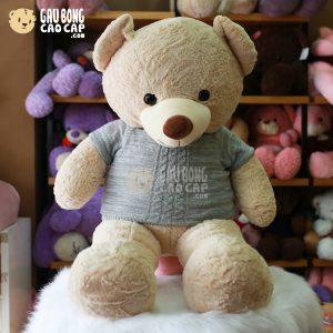 Gấu Teddy Smooth áo len Vặn Thừng