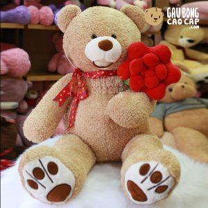 Gấu Teddy lông xù cầm hoa hồng