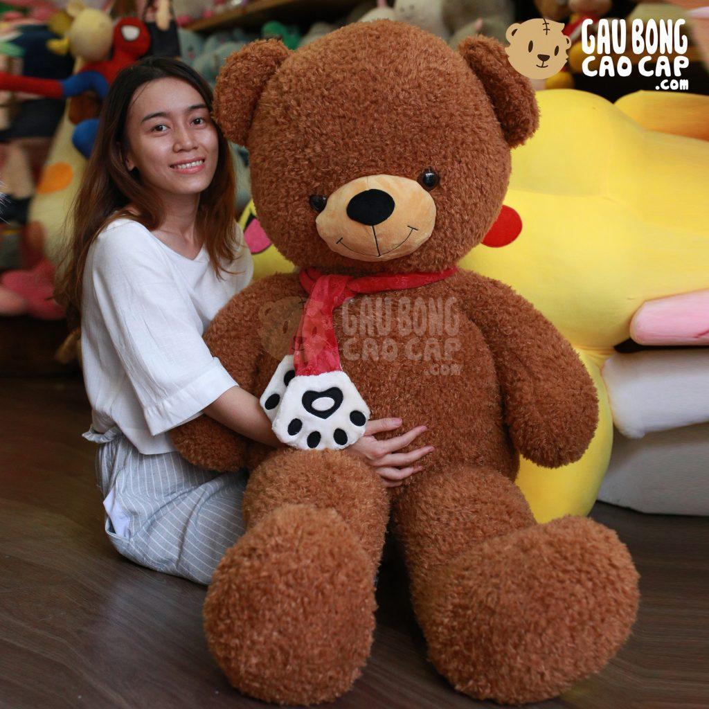 Gấu Teddy choàng khăn chân Gấu