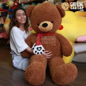 Gấu Teddy lông xù choàng khăn chân gấu