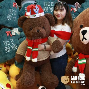 Gấu Teddy Noel lông xù