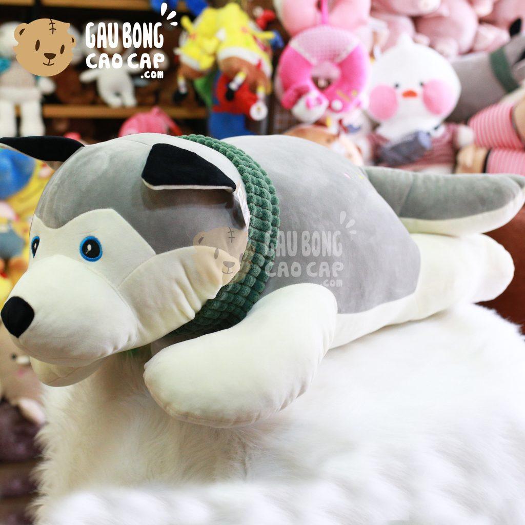 Chó Bông Husky choàng khăn lông mịn