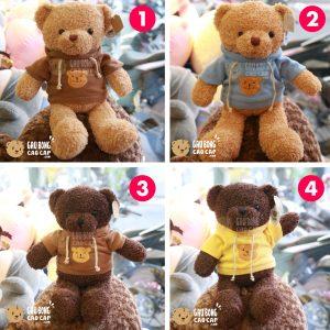 Gấu Teddy lông xù mặc áo Hoodie