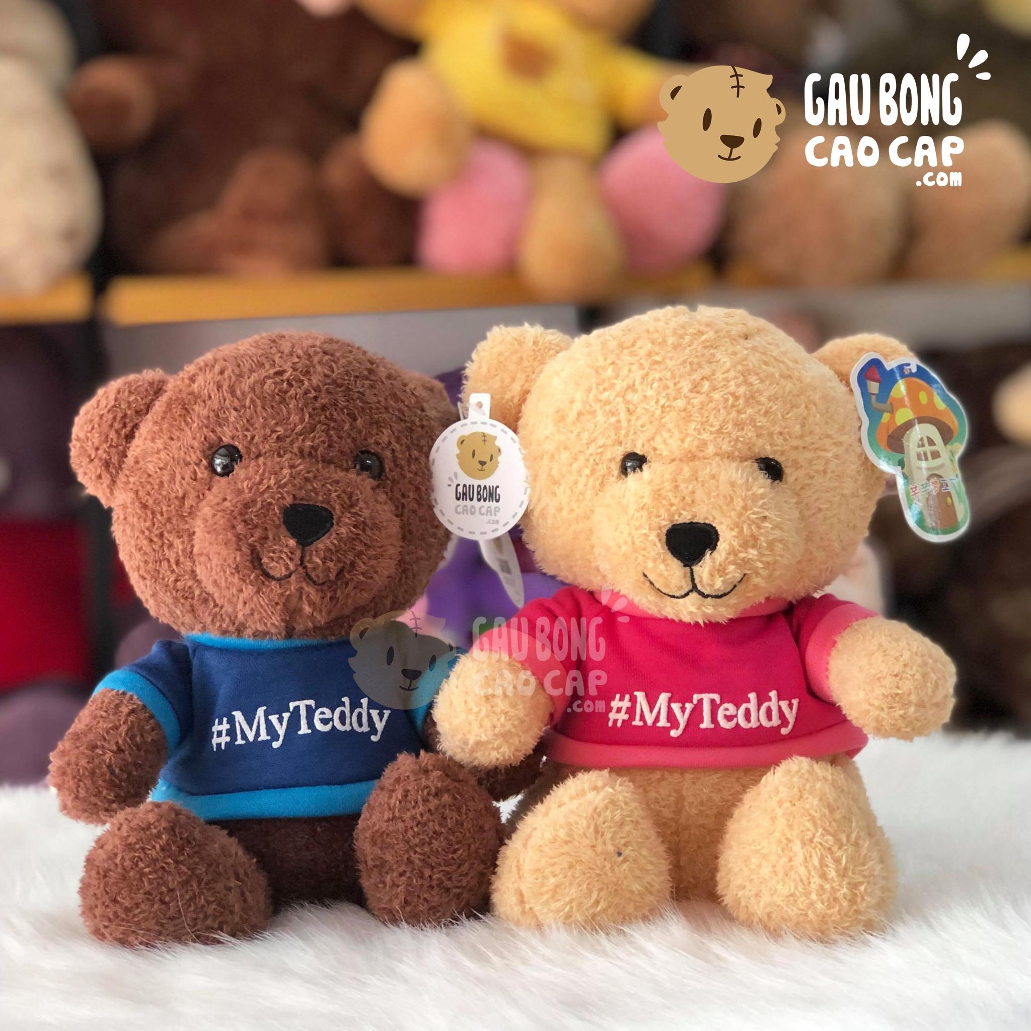 Gấu Teddy lông xù mặc áo My Teddy