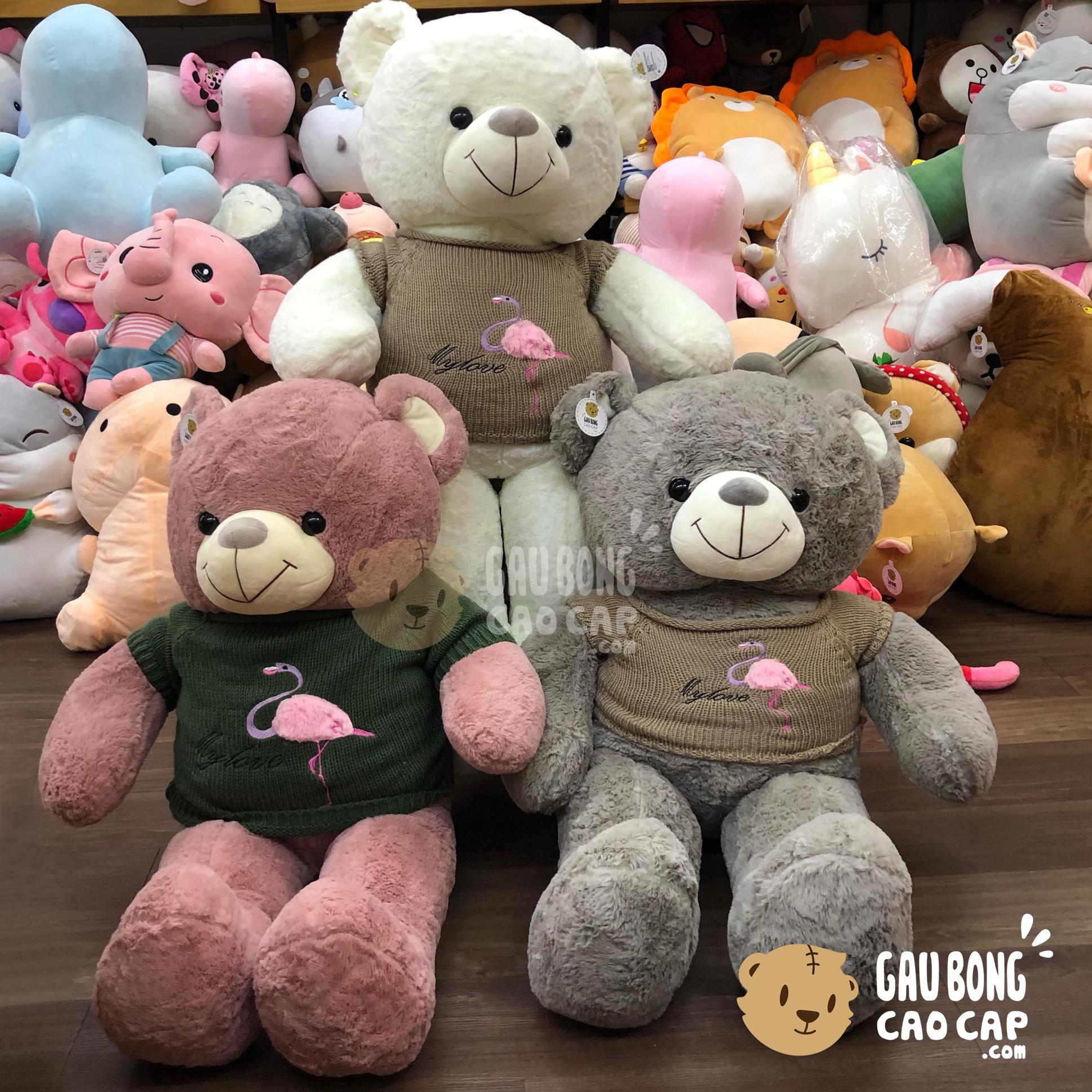 Gấu Teddy lông smooth mặc áo len hồng hạc