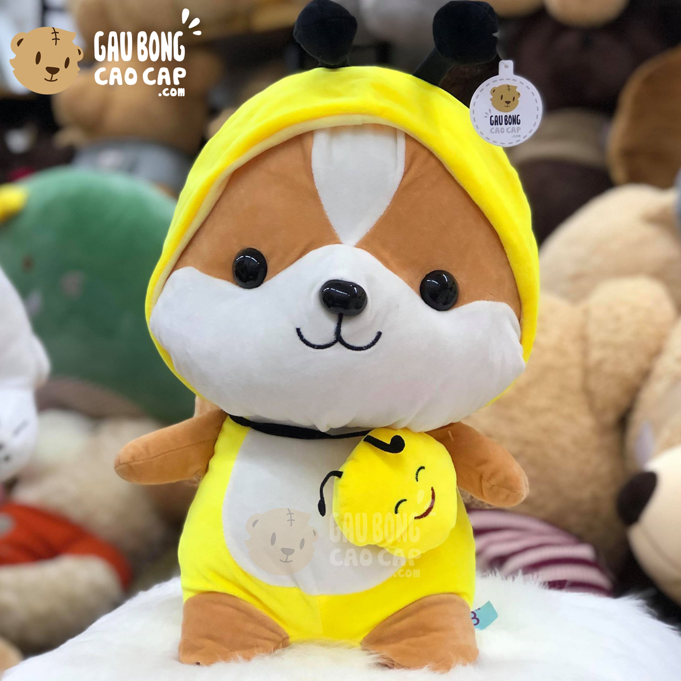 Sóc Bông cosplay Pikachu