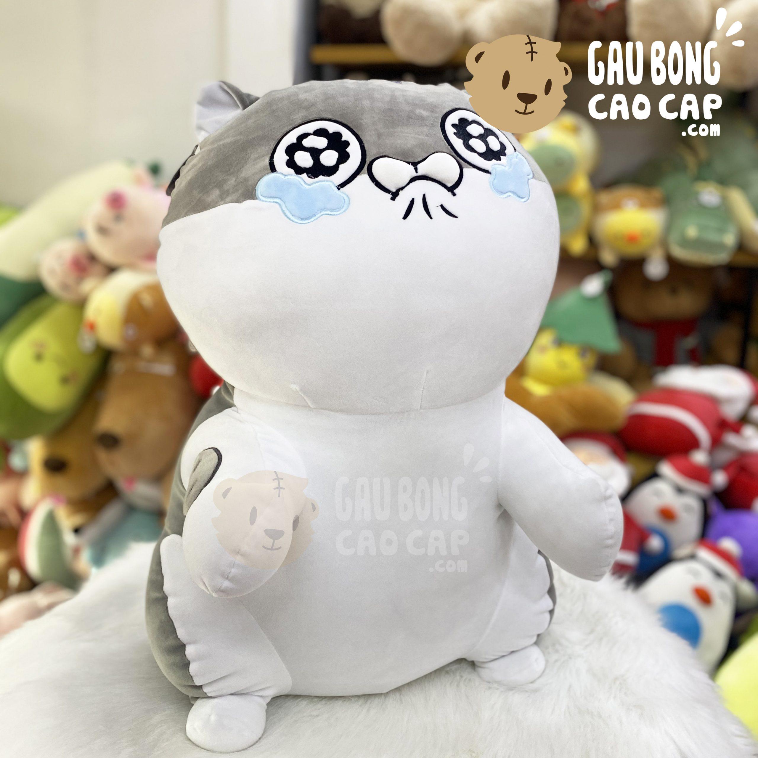Mèo Bông Ami đứng lông mịn