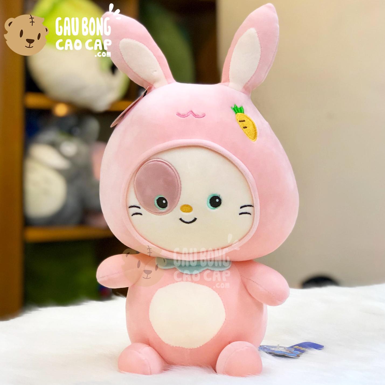 Mèo Bông cosplay Thỏ