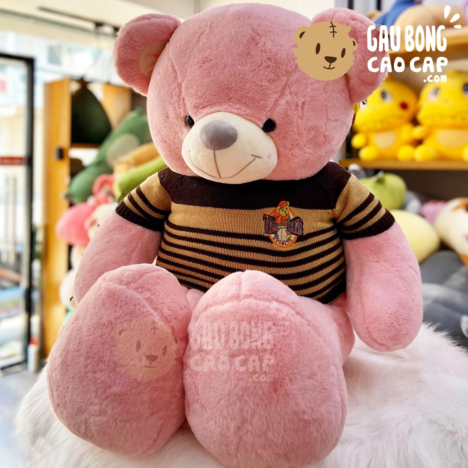 Gấu Teddy lông Smooth mặc áo len Sọc
