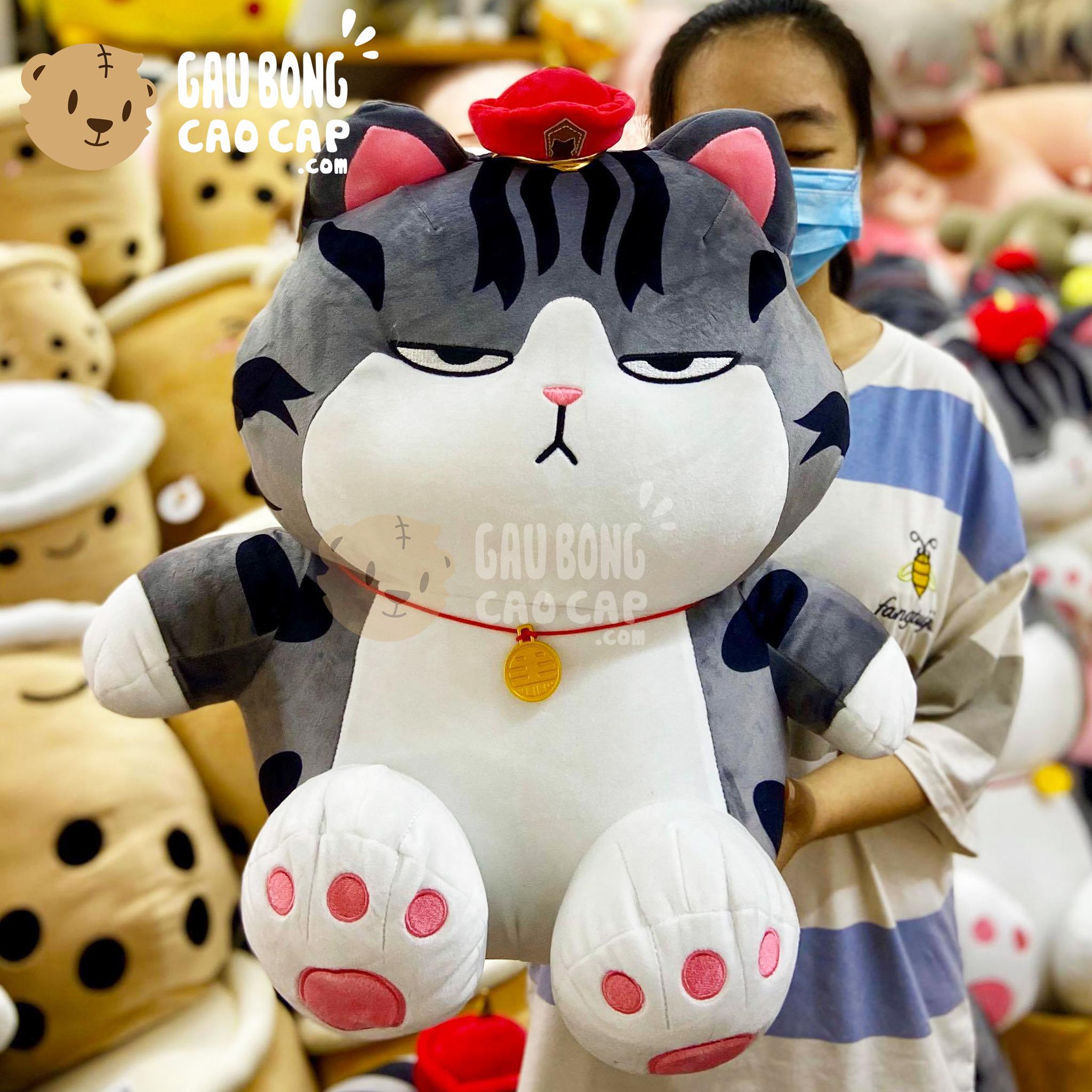 Mèo Bông Hoàng Thường