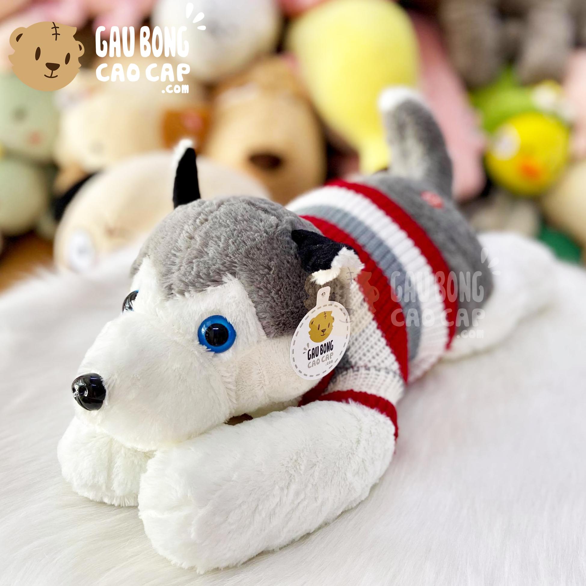 Chó Bông Husky mặc áo len size nhỏ