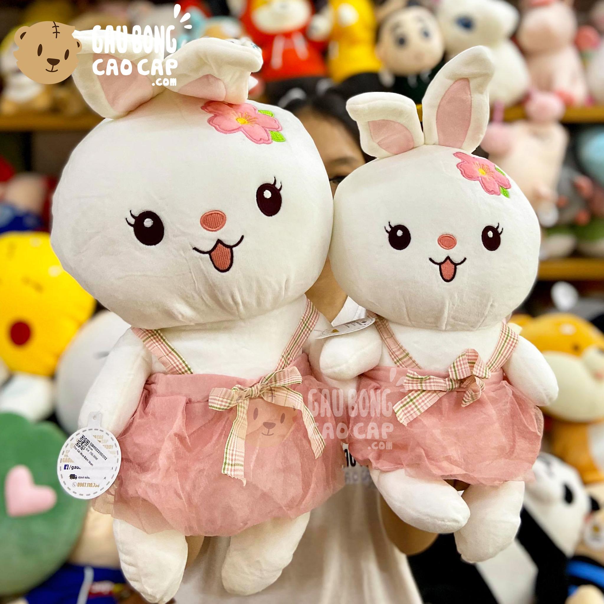 Thỏ Bông mặc Đầm Voan