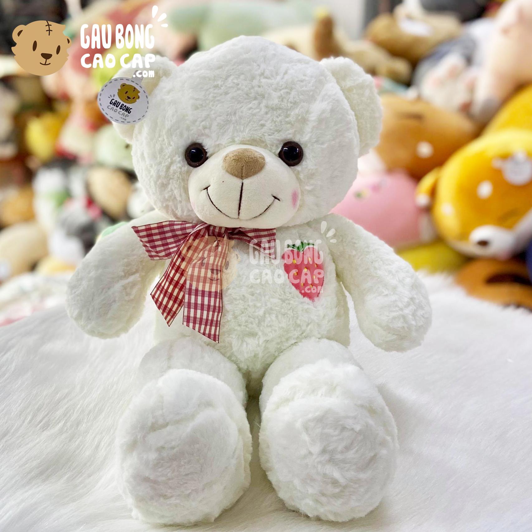 Gấu Teddy Smooth ngực thêu Trái Cây