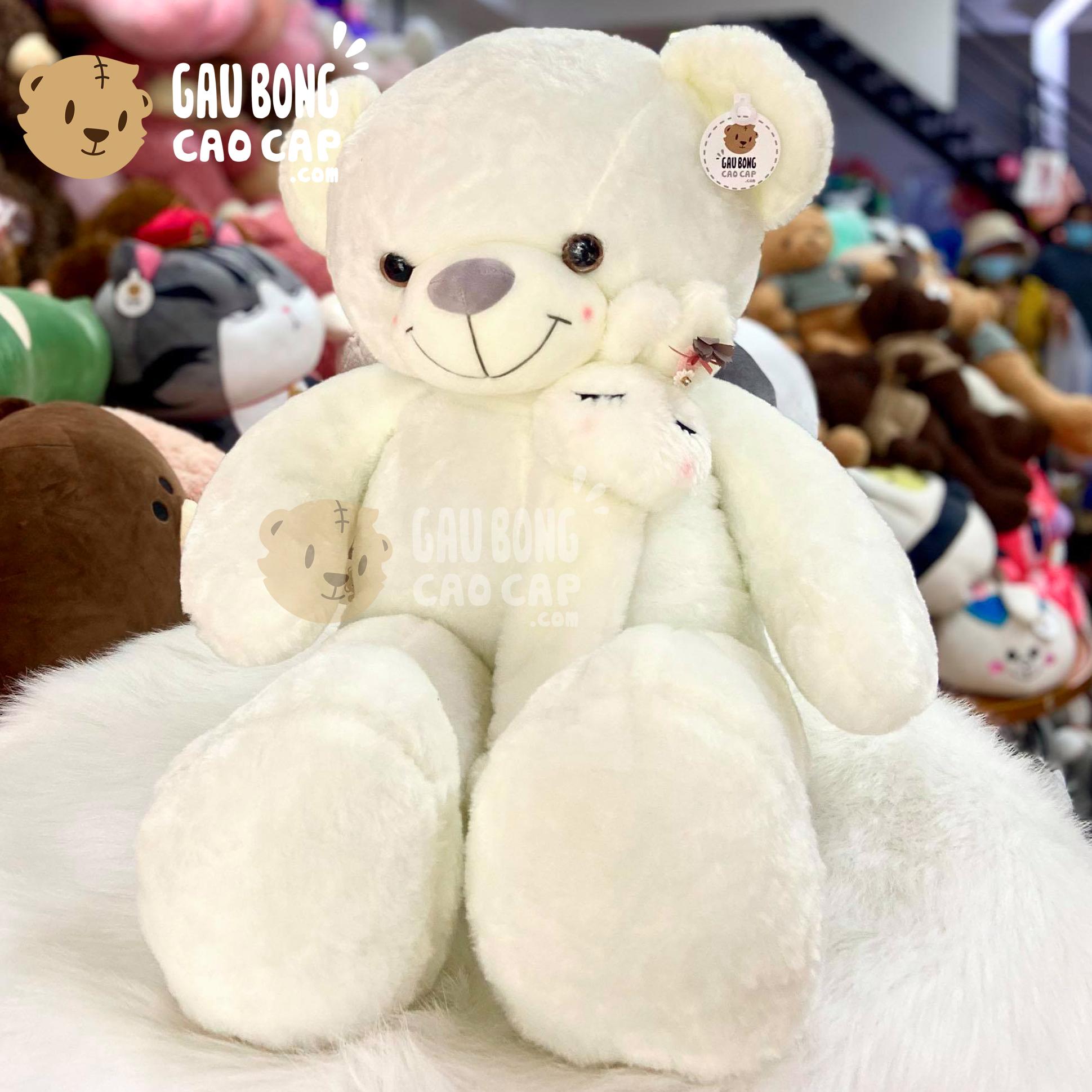 Gấu Teddy Smooth choàng khăn Mặt Thỏ
