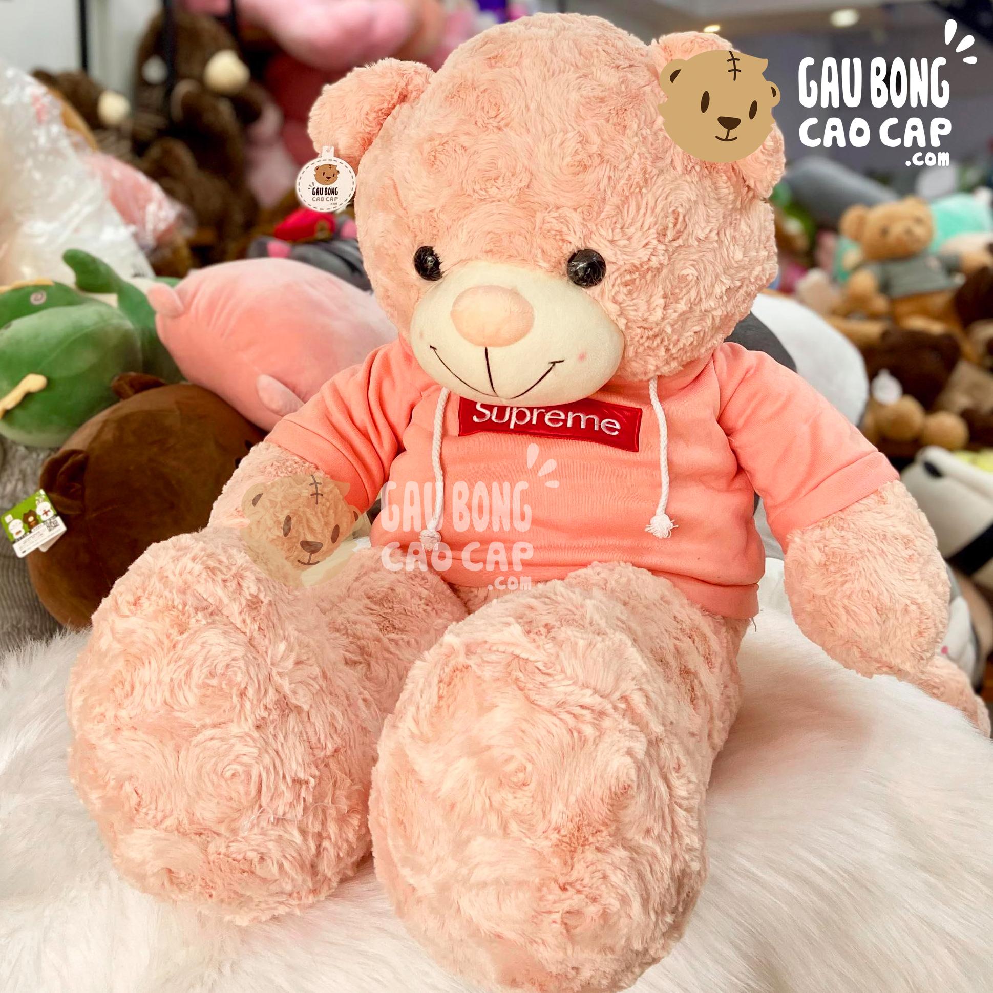 Gấu Teddy mặc áo Hoodie màu Hồng