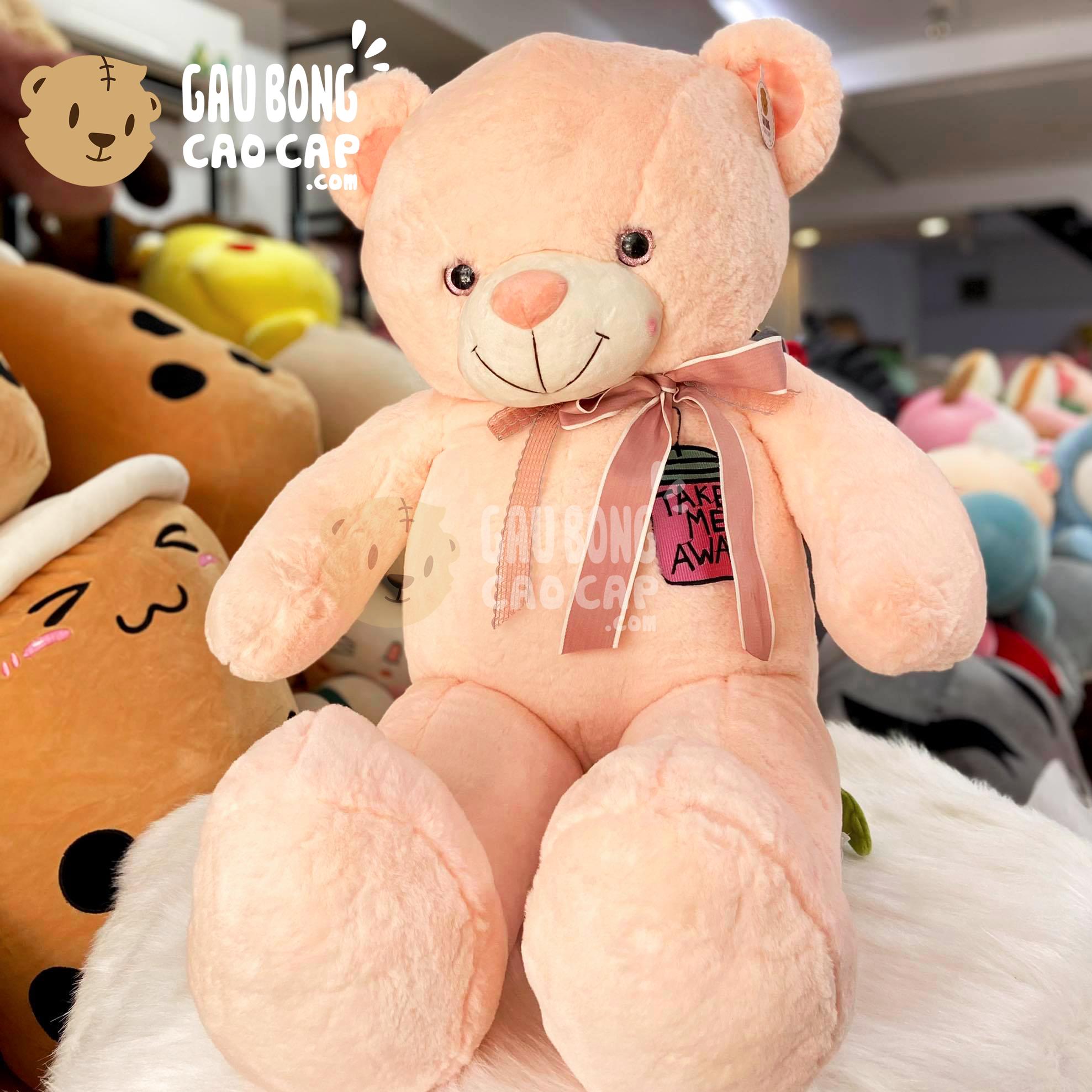 Gấu Teddy Smooth Take me away