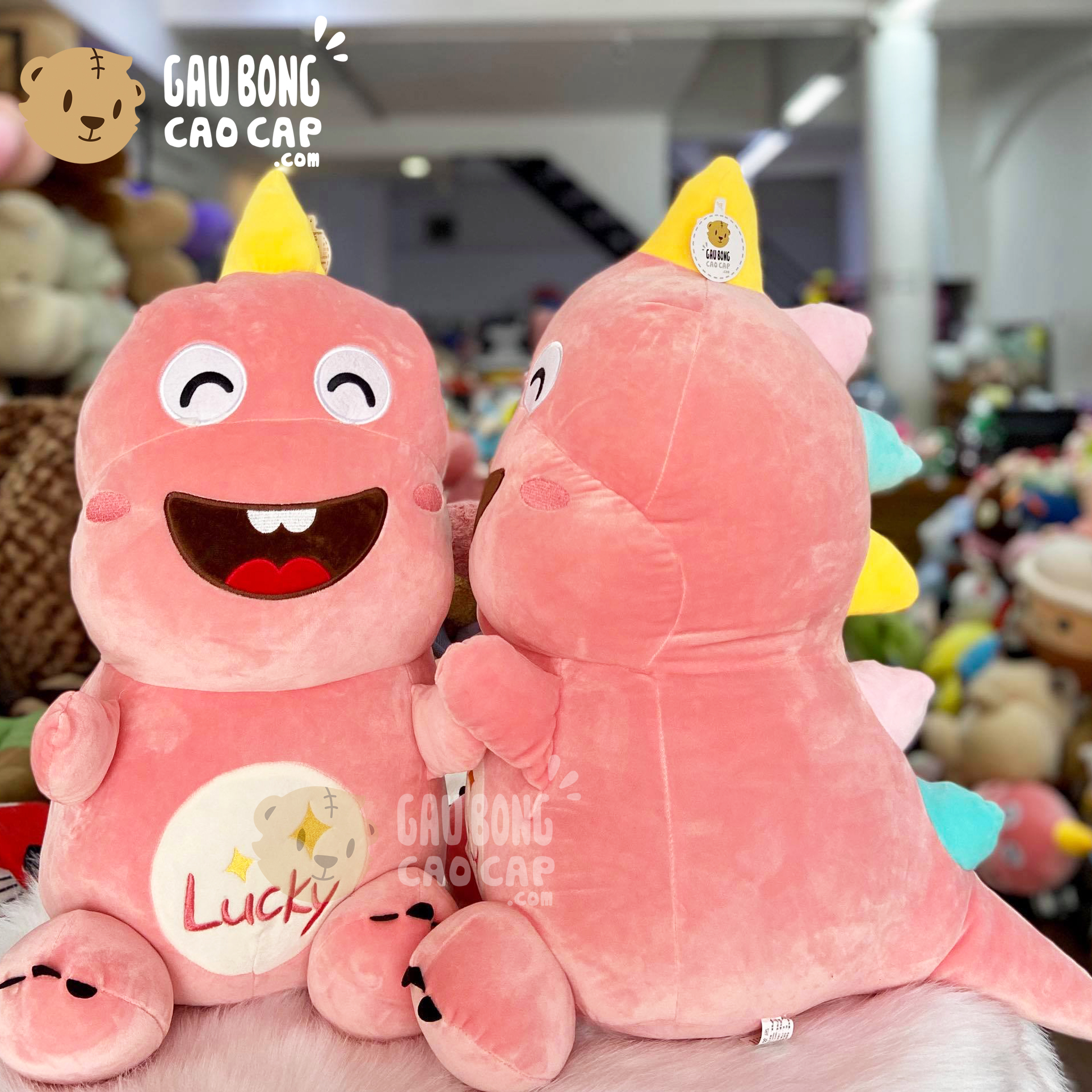 Gấu Bông Khủng Long lucky cười tươi