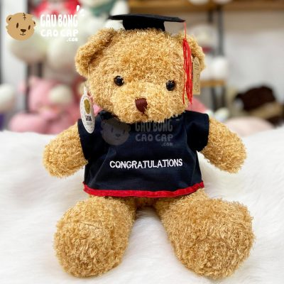 Gấu Teddy tốt nghiệp lông xù 40cm