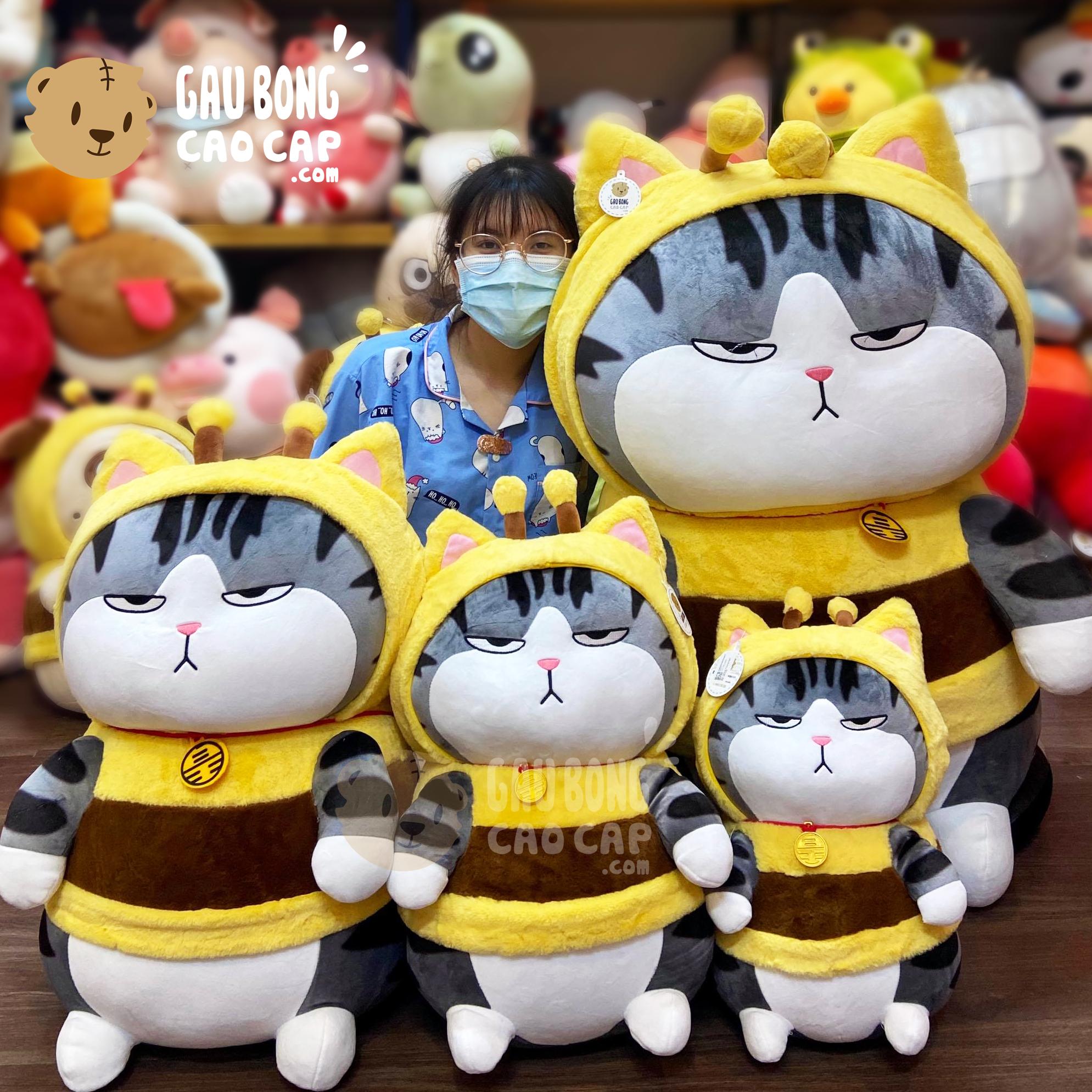 Mèo Bông Hoàng Thượng cosplay Ong Vàng
